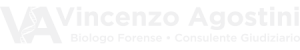 logo-vincenzo-agostini-orizzontale-chiaro