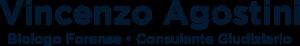 vincenzo-agostini-logo-centrato