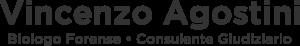 vincenzo-agostini-logo-centrato-grigio